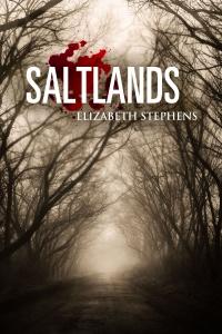 Saltlands front 2